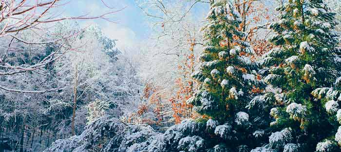 Winter is a wonderful time to enjoy shopping, dining, and the wonderful sights in Warminster, Bucks County PA